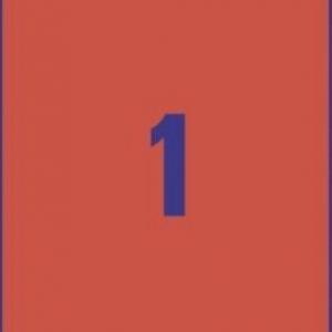 Универсальные красные этикетки из бумаги, 210 x 297, 3470