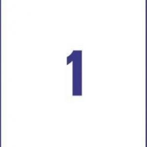 Универсальные белые этикетки из бумаги, 210 x 297, 6119