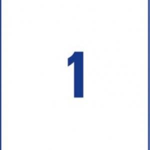 Белые водостойкие пленочные этикетки из полиэстера, 210 x 297, L4775-100