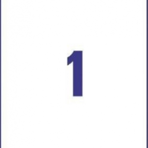 Белые высокопрочные этикетки из полиэстера, 210 x 297, L4775-20