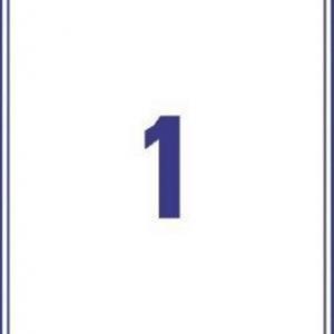 Белые матовые влагостойкие этикетки из полиэстера, 199.6 x 289.1, L7997-25