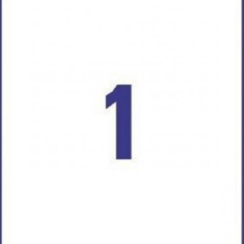 Прозрачные этикетки из полиэстера, 210 x 297, J8567-25