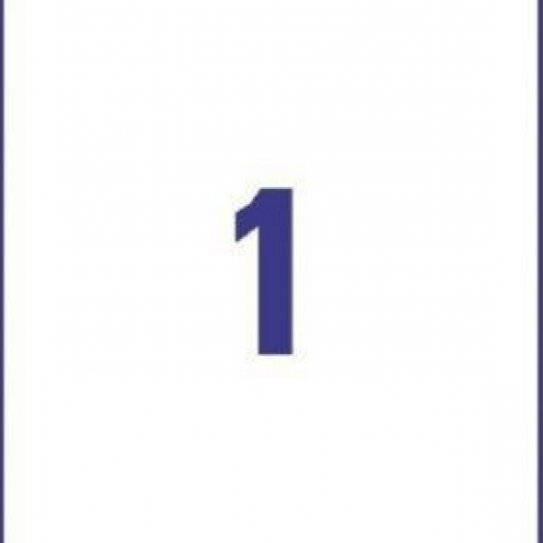Прозрачные этикетки из полиэстера, 210 x 297, L7567-25