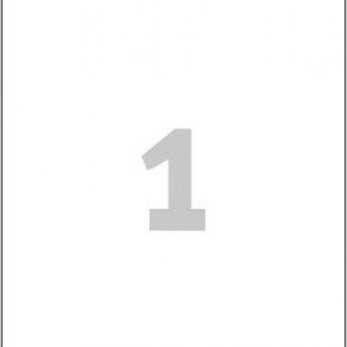 Белые глянцевые этикетки из бумаги, 210 x 297, L7767-40
