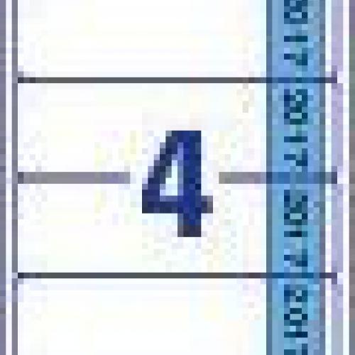 Белые этикетки для папок на 2017 год из бумаги, 61 x 192, L4761J17-20