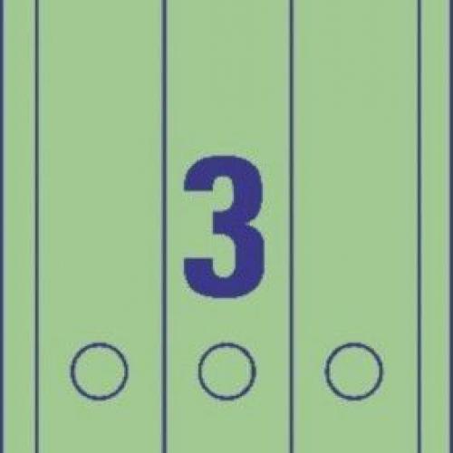 Зеленые длиные непрозрачные этикетки из бумаги для папок, 61 x 297, L4754-20