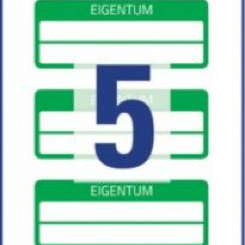 Зелёные инвентарные этикетки VOID с 2 полями для текста из полиэстера, 50 x 20, 6926