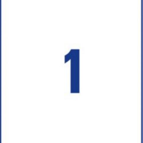 Белые этикетки со сверхсильным клеем из бумаги, 210 x 297, L7877-20
