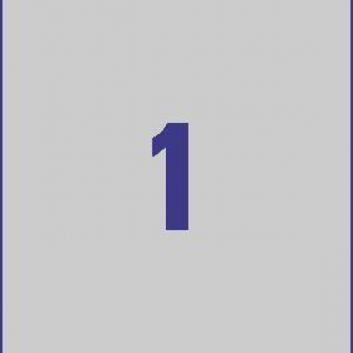Серебристые этикетки из полиэстера, 210 x 297, L6013-20